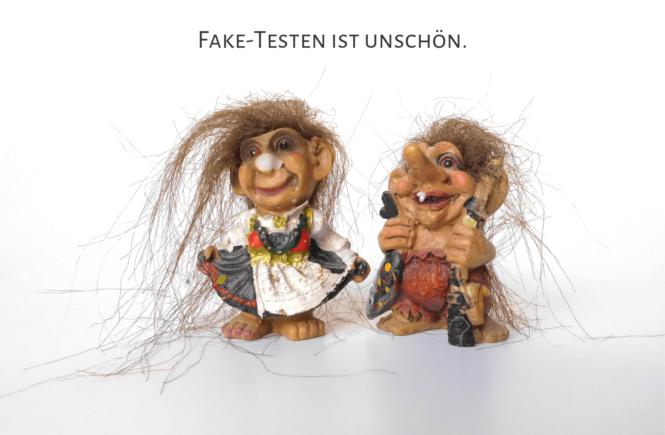 Fake Test Seiten Story